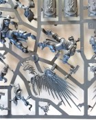 Warhammer Age of Sigmar - Stormcast Eternal Prosecutor and Liberator parts on sprue
