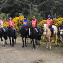 Horse back trekking county wicklow dublin
