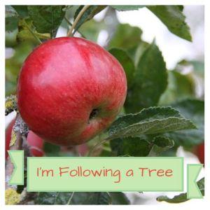 Follow a Tree