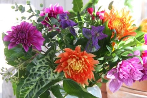 Autumn-Flowers 01