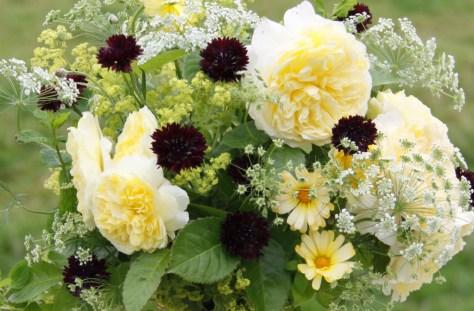 Yellow-Flowers-Foliage