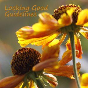 looking-good-guidelines - Copy