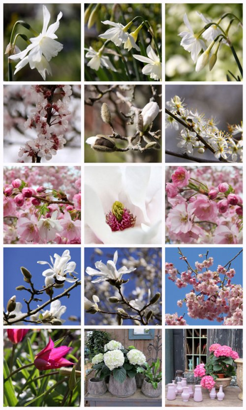 Early-April-Collage