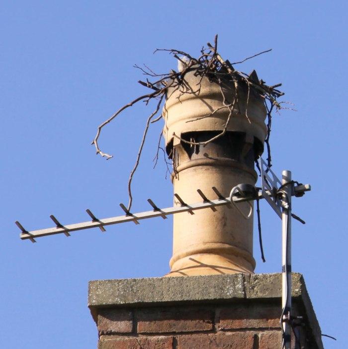 crows-nest