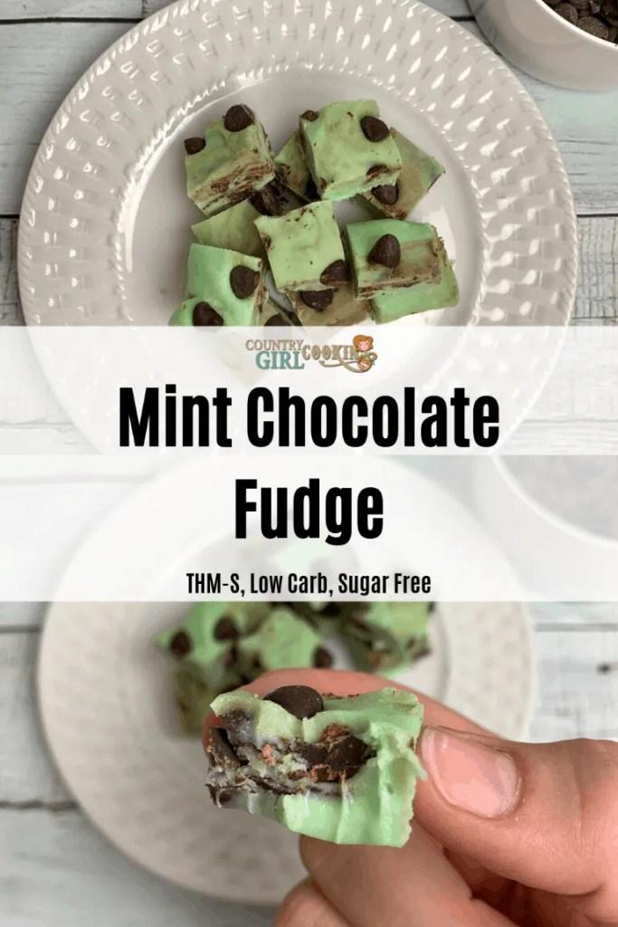 Mint Chocolate Fudge (THM-S, Low Carb, Sugar Free)