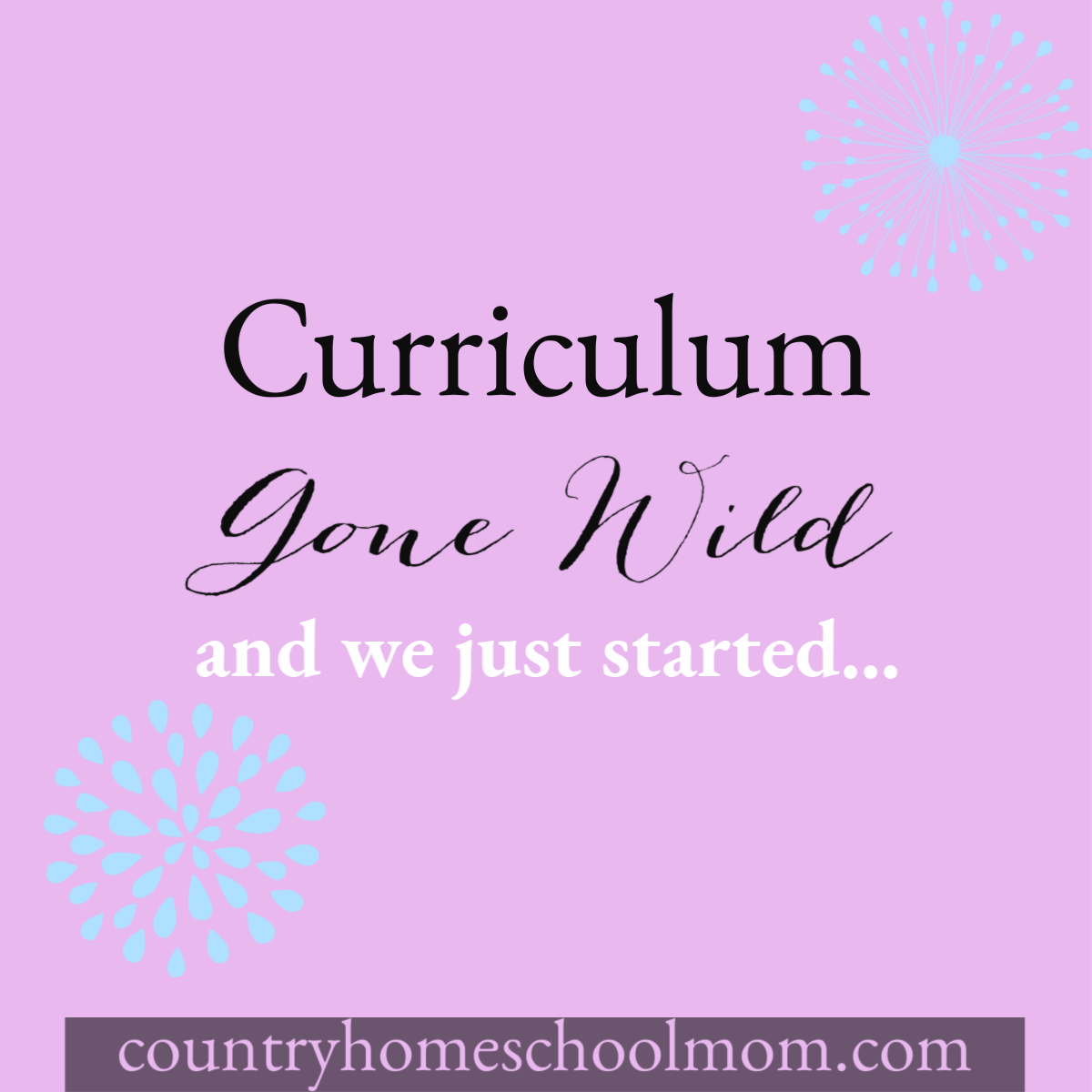 Homeschool Curriculum Gone Wild Country Homeschool Mom