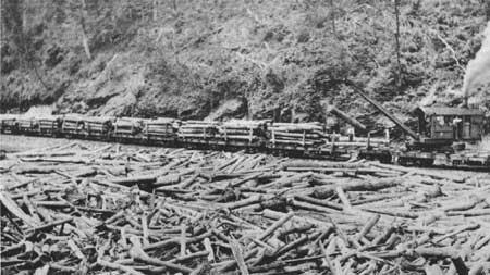 http://www.foresthistory.org/ASPNET/Publications/region/8/history/images/fig10.jpg