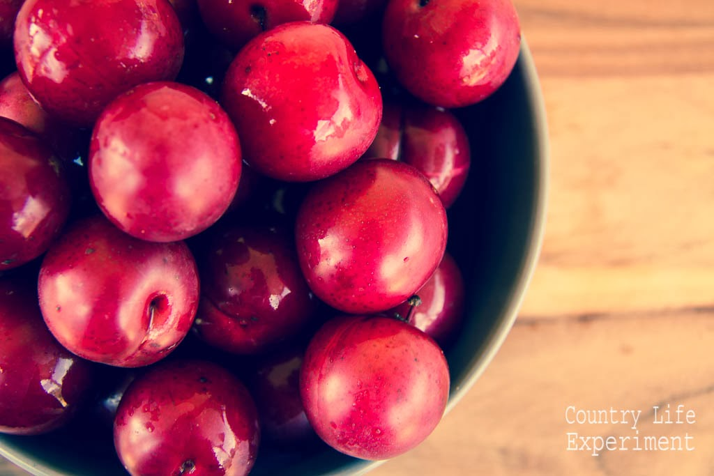 {Recipe} Spiced Plum Paste