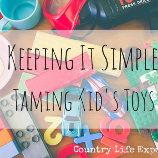Keeping It Simple | Taming The Kid's Toys