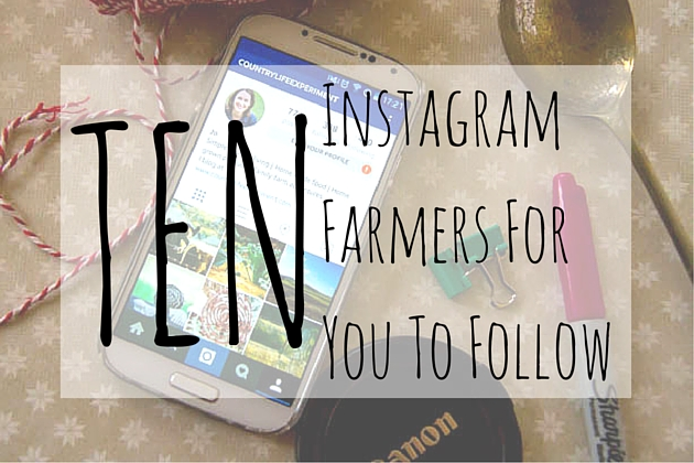 Instagram FarmersFor You ToFollow (1)