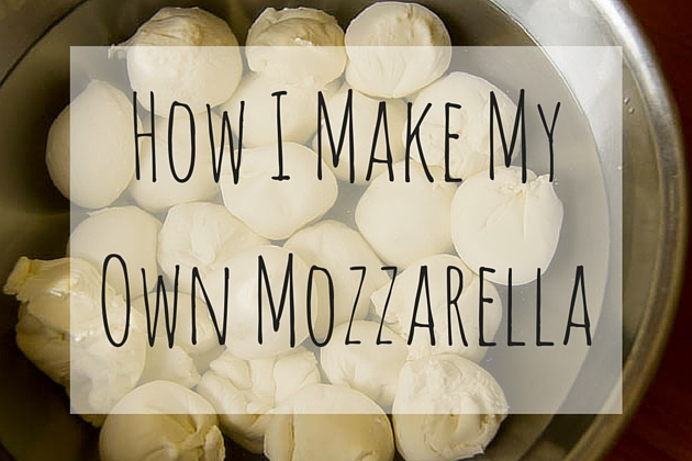 How I Make My Own Mozzarella (1)
