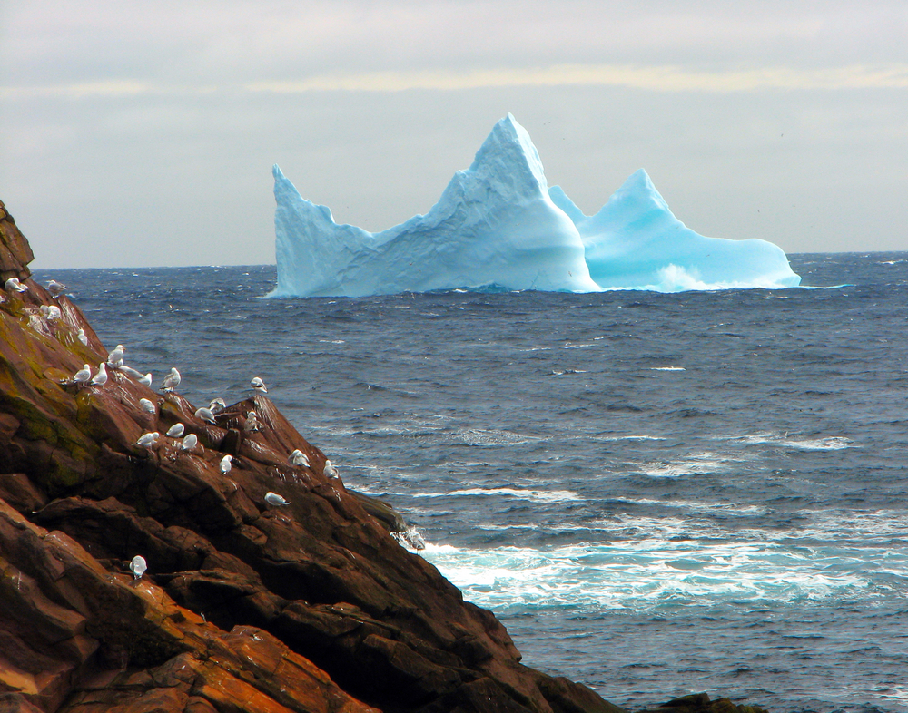 Country Mile Iceberg in Newfoundland