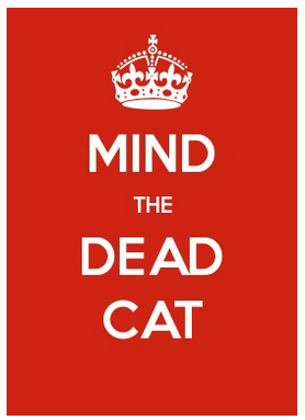 mind-the-dead-cat-red