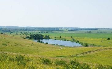 Коттеджный посёлок «Новая Дубрава» в Липецкой области ...