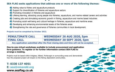 SEA FLAG Final Call for Applications