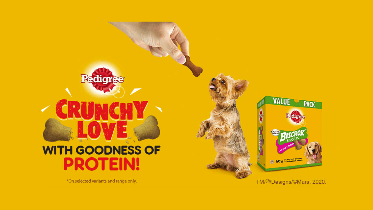 How to Get Free Sample of Pedigree Biscrok Biscuits
