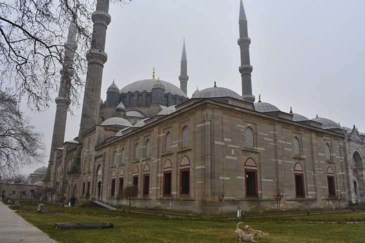 Selimiye Cami, Edirne, Couple Coffee Joy