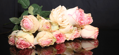happy anniversary gift flowers