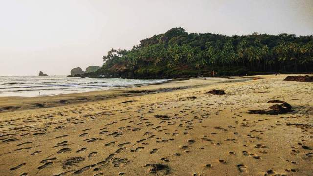 Secluded Goan beach