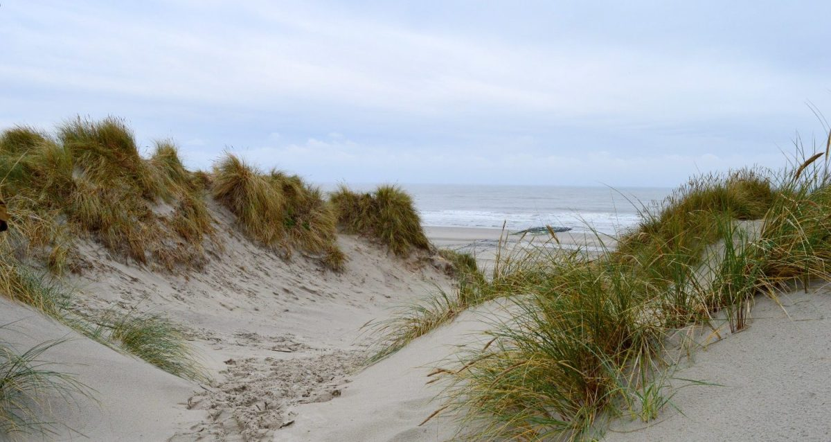 dutch_autumn_weekend_on_vlieland_12