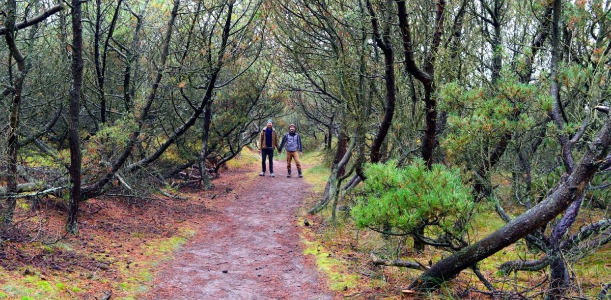 dutch_autumn_weekend_on_vlieland_23