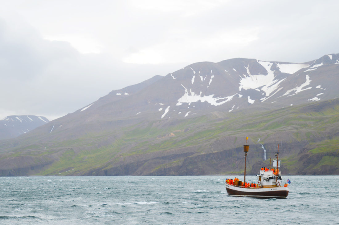 gay-couple-exploring-north-iceland-whale-watching-husavik-08
