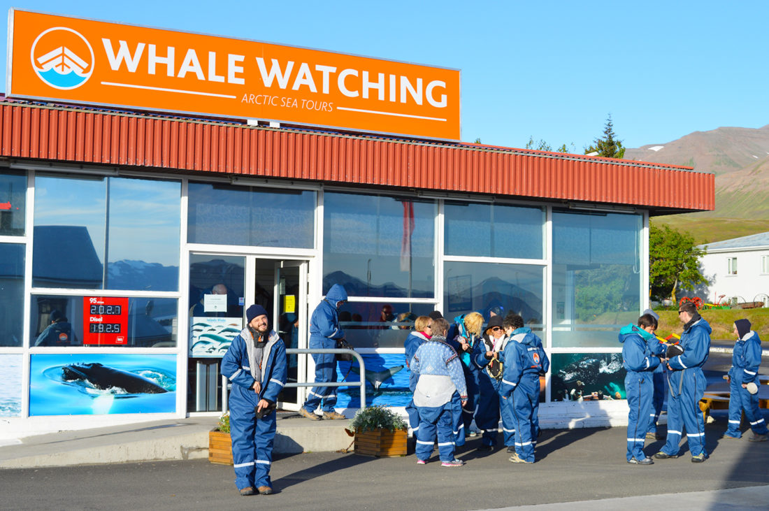 Humpback Whale Watching Dalvík North Iceland © CoupleofMen.com