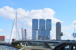Gay Travel Rotterdam Harbor view Rotterdam with Erasmus Bridge | Gay Couple City Weekend Rotterdam © CoupleofMen.com