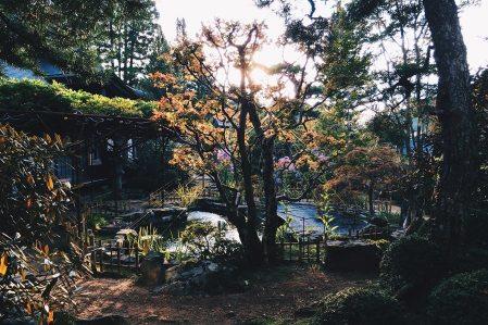 Kumagaiji-Buddhist-Temple-Lodging-Koyasan-Japan-2