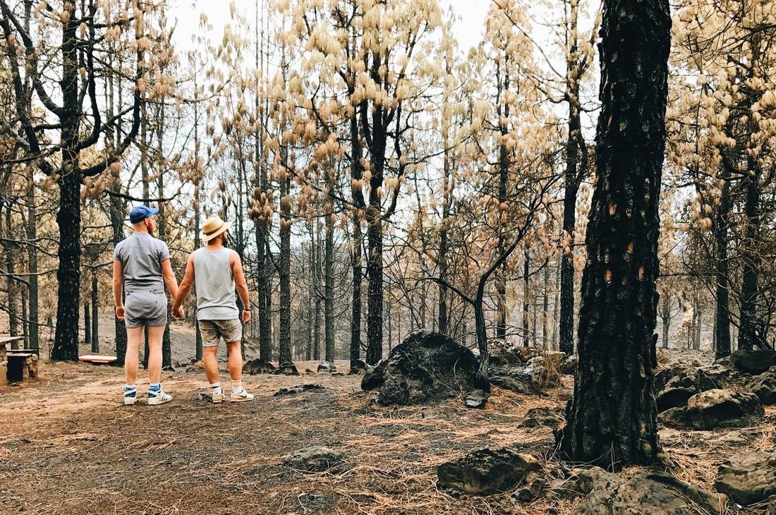 After the bushfires on Gran Canaria © CoupleofMen.com
