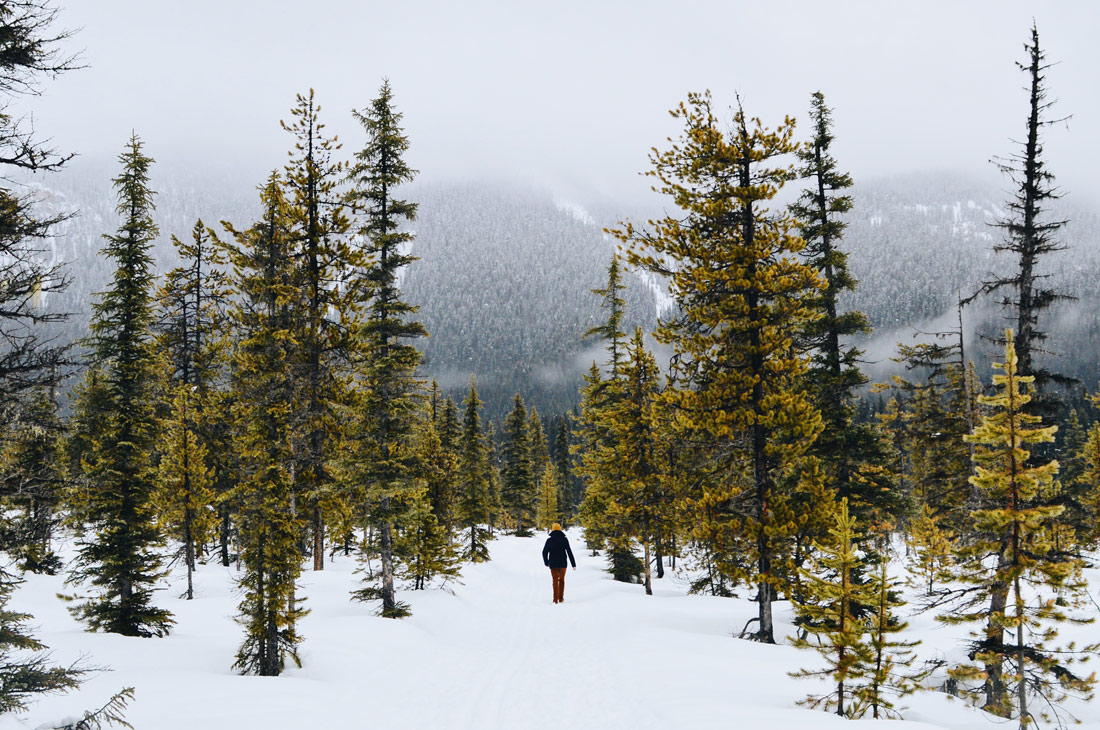 Magical: Daan walking with stunning Rocky Mountain Backdrop | Emerald Lake Lodge gay-friendly © Coupleofmen.com