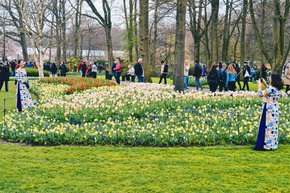 So many photo opportunities   Keukenhof Tulip Blossom Holland © Coupleofmen.com