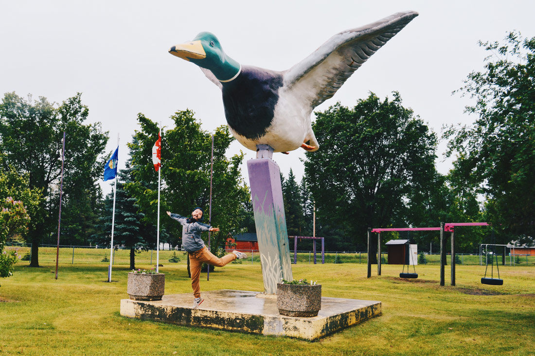 Karl flying away with the World's Largest Mallard Duck in the Town of Andrew | Road Trip Edmonton Northern Alberta © Coupleofmen.com