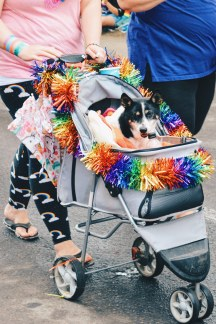 Again, Edmonton loves (Rainbow) Dogs | Gay Edmonton Pride Festival © Coupleofmen.com