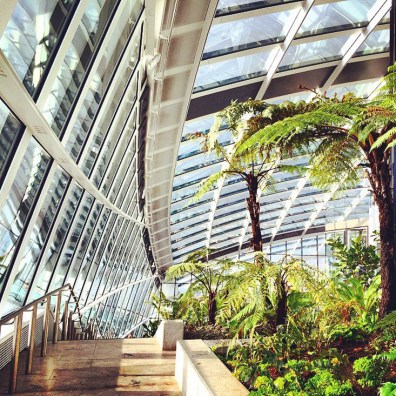 Good Morning Palm Trees at the Sky Garden at Fenchurch 21 London Banks | Kurztrip London Tipps Tricks © Coupleofmen.com