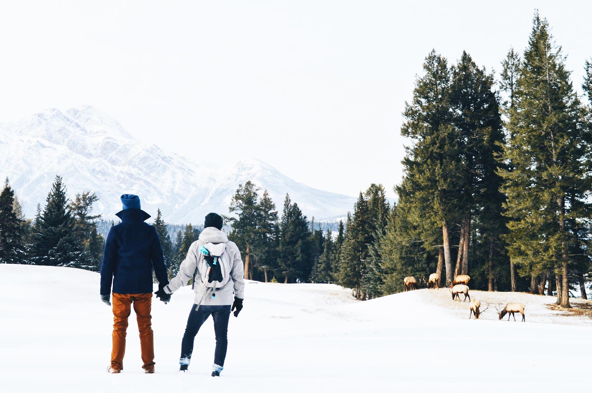 Gay Winter Trip to Canada: Road Trip to Jasper National Park Gay Winterreise Kanada Edmonton Jasper National Park © Coupleofmen.com