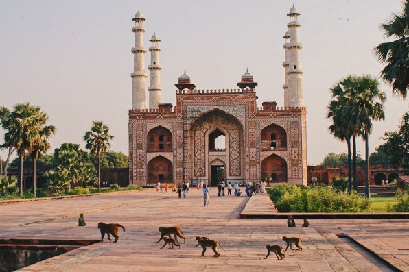 Temples surrounded by wide parks with birds and monkeys in Agra © Coupleofmen.com