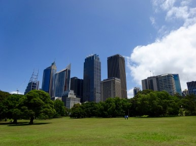 CBD from Botanical Gardens