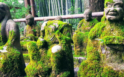 The 5 Best (And Most Instagrammable) Things to do in Kyoto