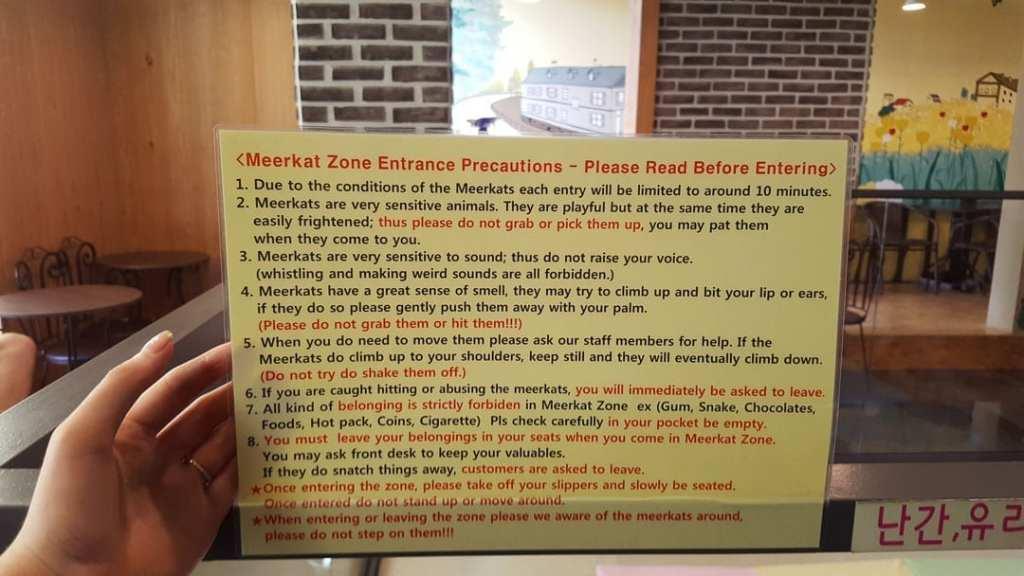 Meerkat Cafe Seoul Rules