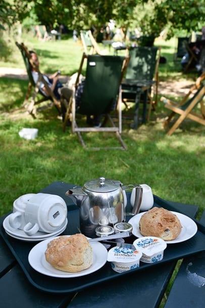 orchard-tea-room-cambridge-scones-uk