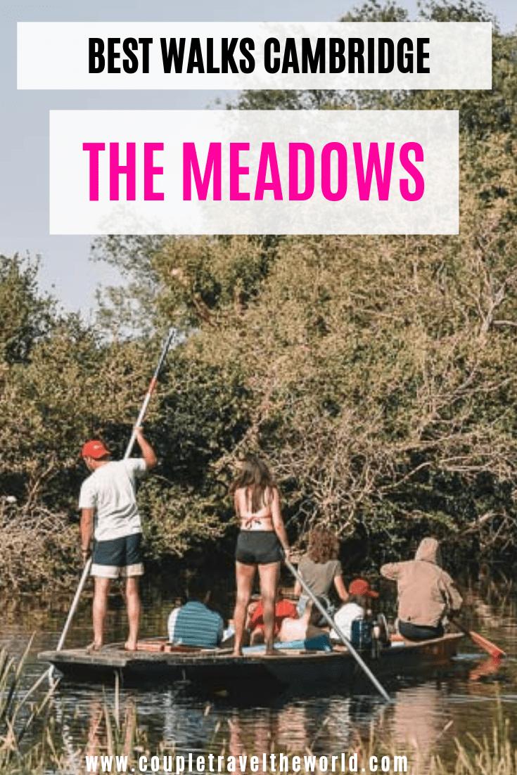 the-meadows-cambridge