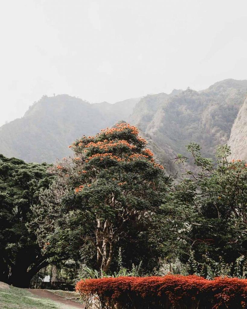 Kukui-Maui-Hawaii-rainest-cities-in-world