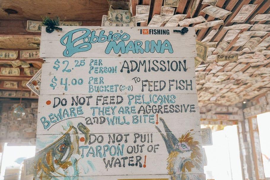 Robbie's-Tarpon-feeding-prices