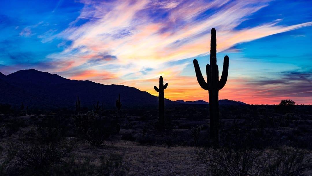 30+ Phoenix Arizona Quotes for Instagram Captions