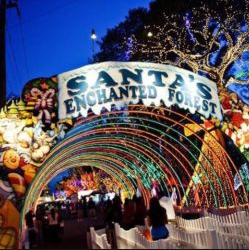Santa's Enchanted Forest Prices