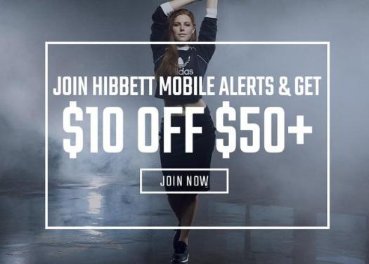 Hibbett Sporting Coupon Code 45% Off
