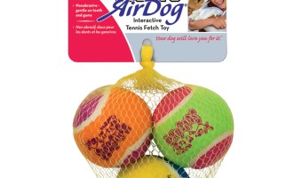 Great Price On KONG Happy Birthday AirDog Squeaker Balls