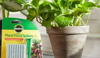 Miracle-Gro 48ct. Indoor Plant Food Spikes $1.57 (reg. $5.19)