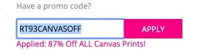 entering promo codes at easycanvasprints.com